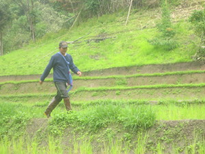 We were on our way to another village when we heard this man call loudly to us from far across the rice field....